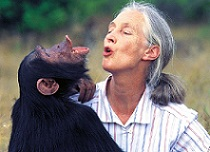 Jane Goodall, photo by Michael Neugebauer